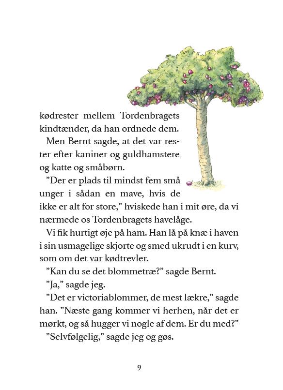 Tordenbraget-Ulf-Stark-ABCforlag-05